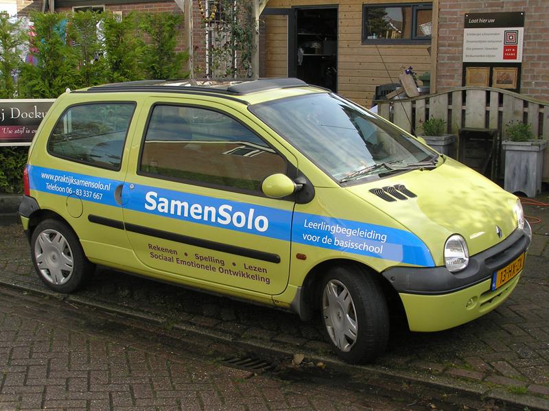 SamenSolo Twingo